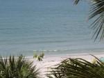Sanibel Island Beach
