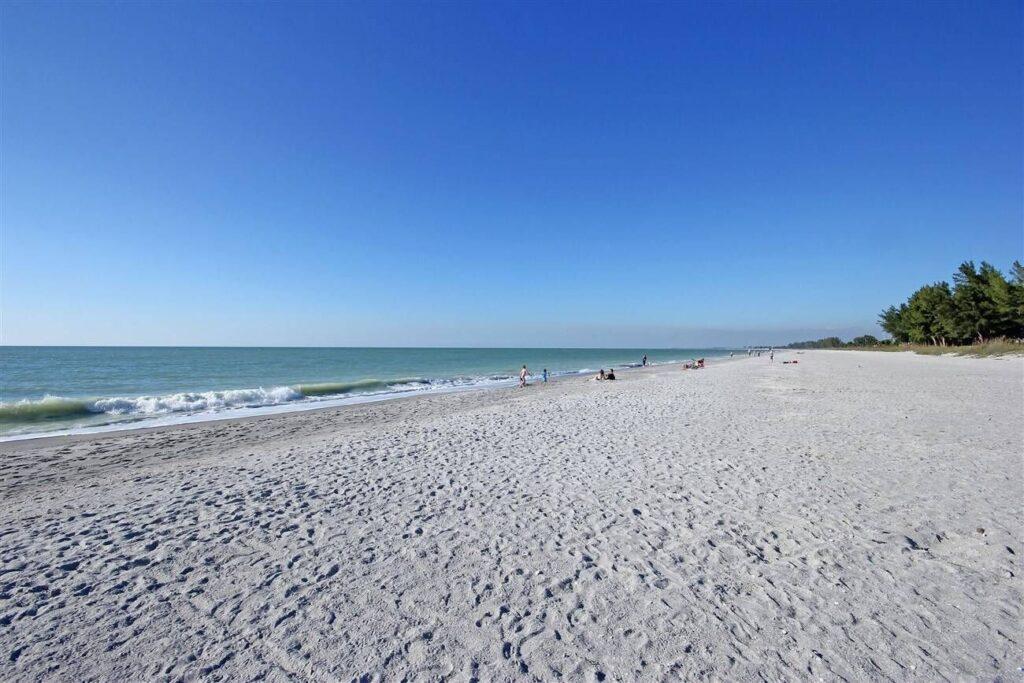 south seas beach view